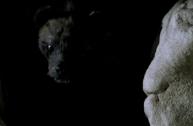 Buffy-The-Pack-Hyena1